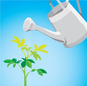 Illustration of a flower pot watering a growing plant